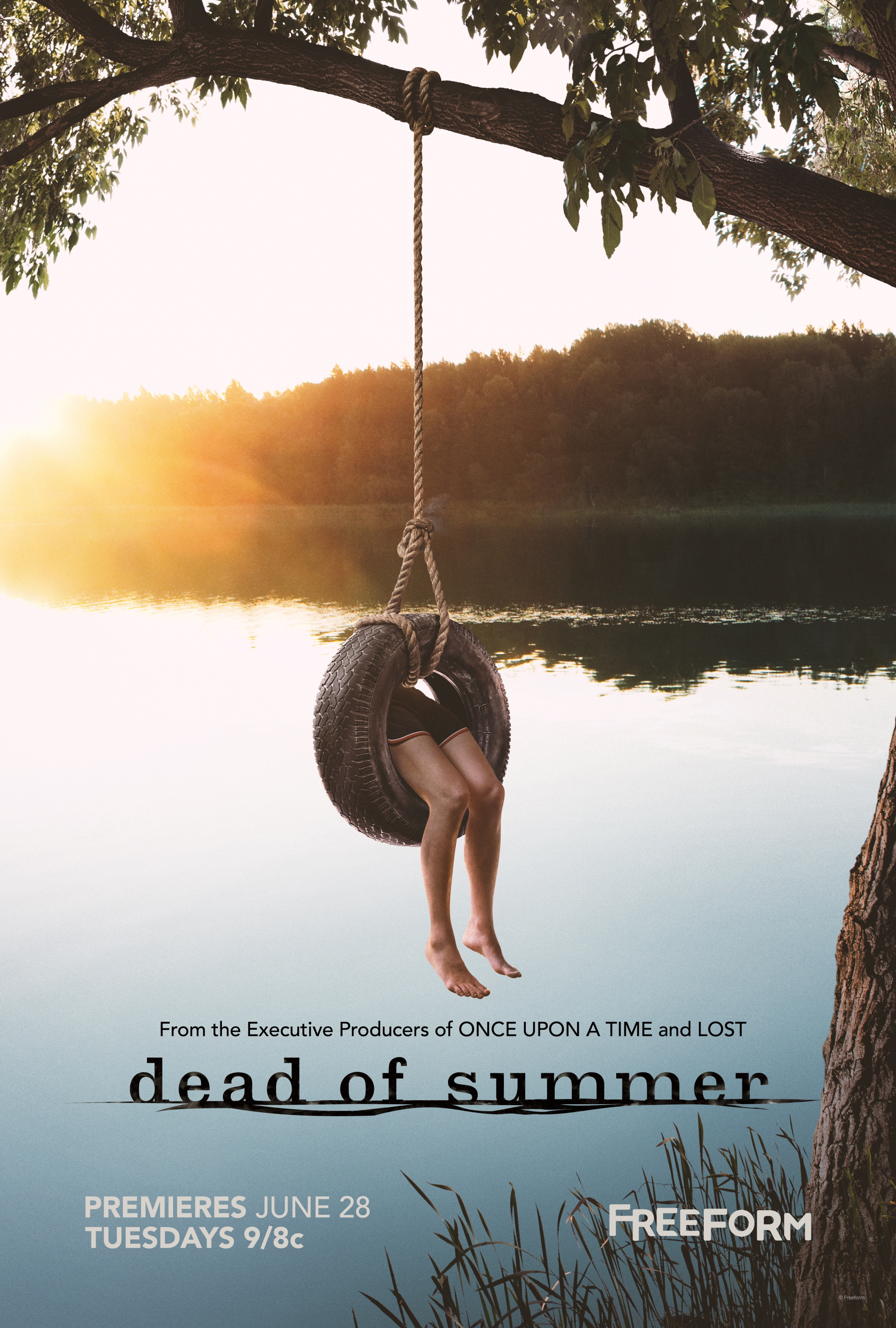 Thumbnail for Freeform Dead of Summer Tire Swing