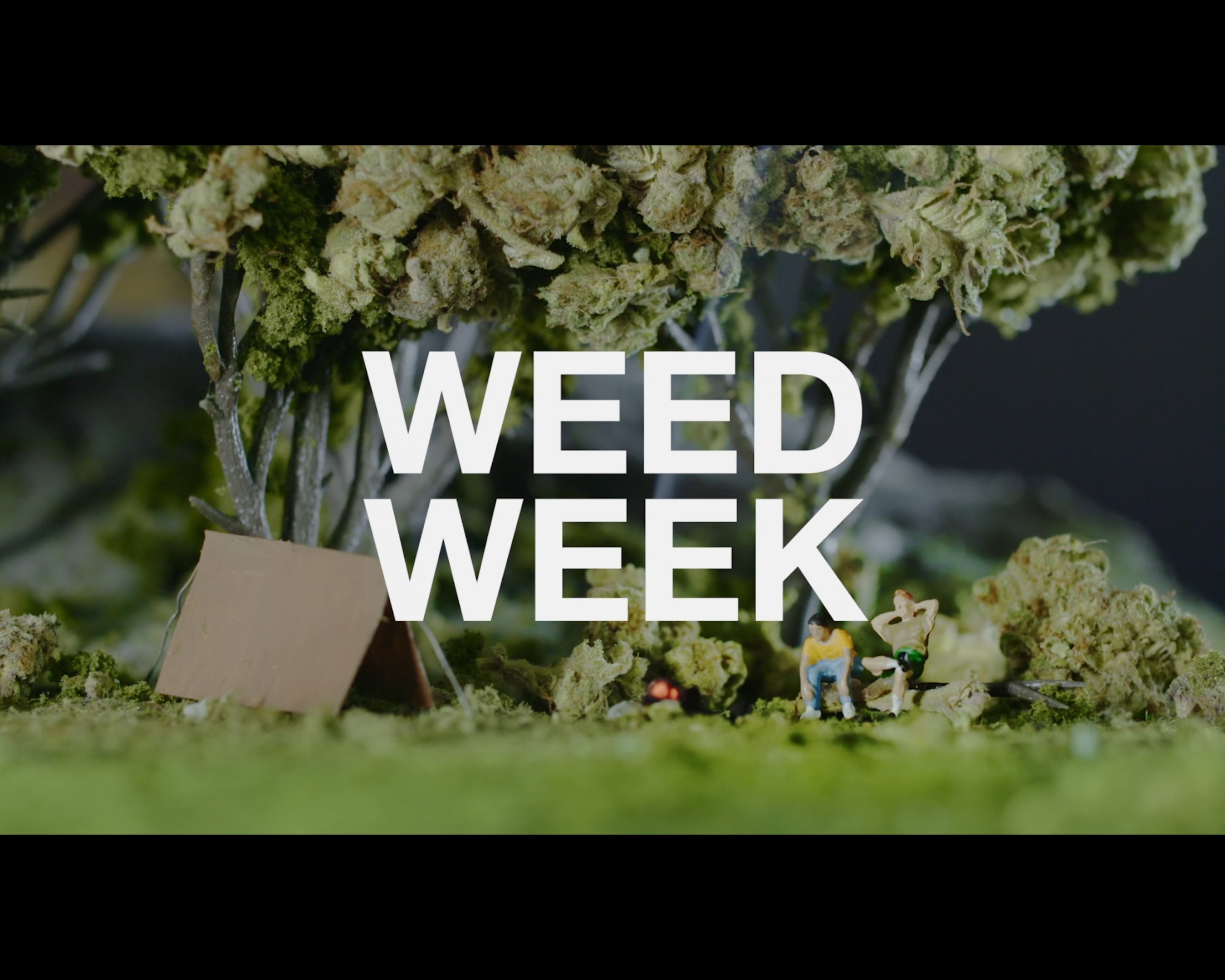 Image Media for Weed Week