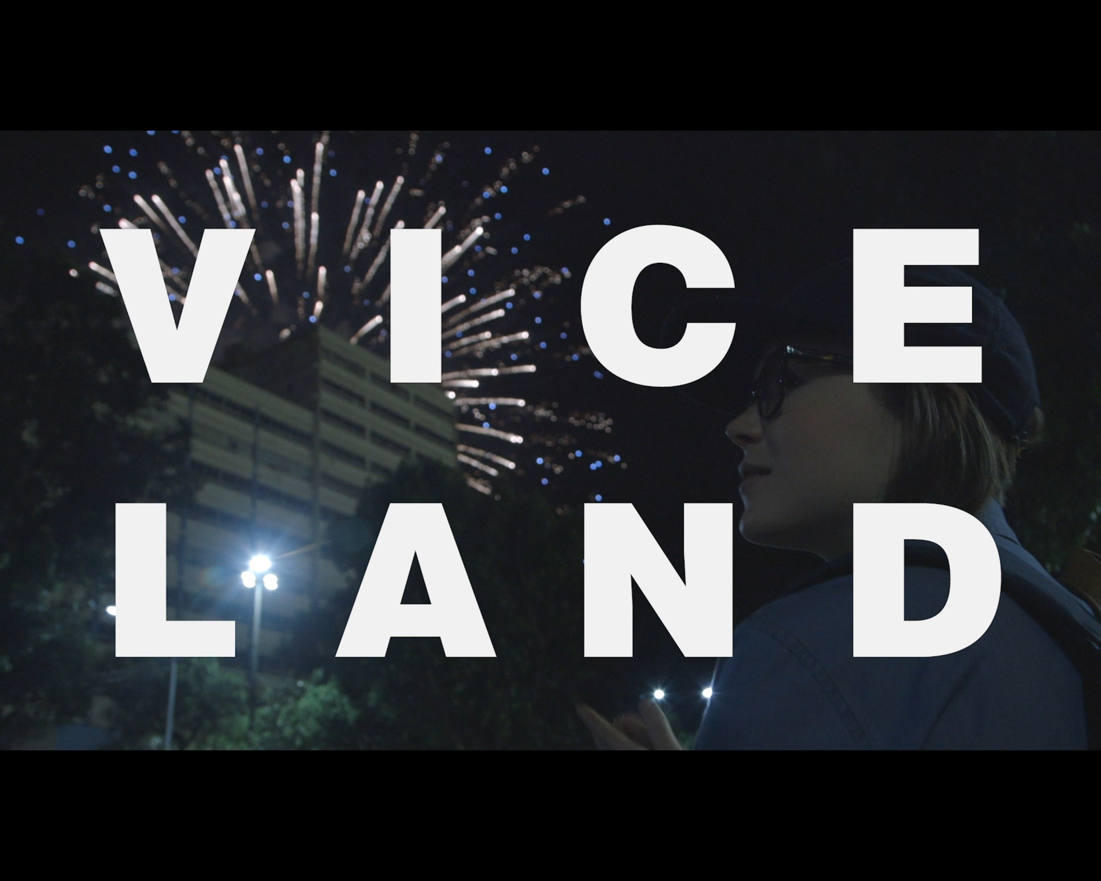 Image Media for VICELAND Brand Identity