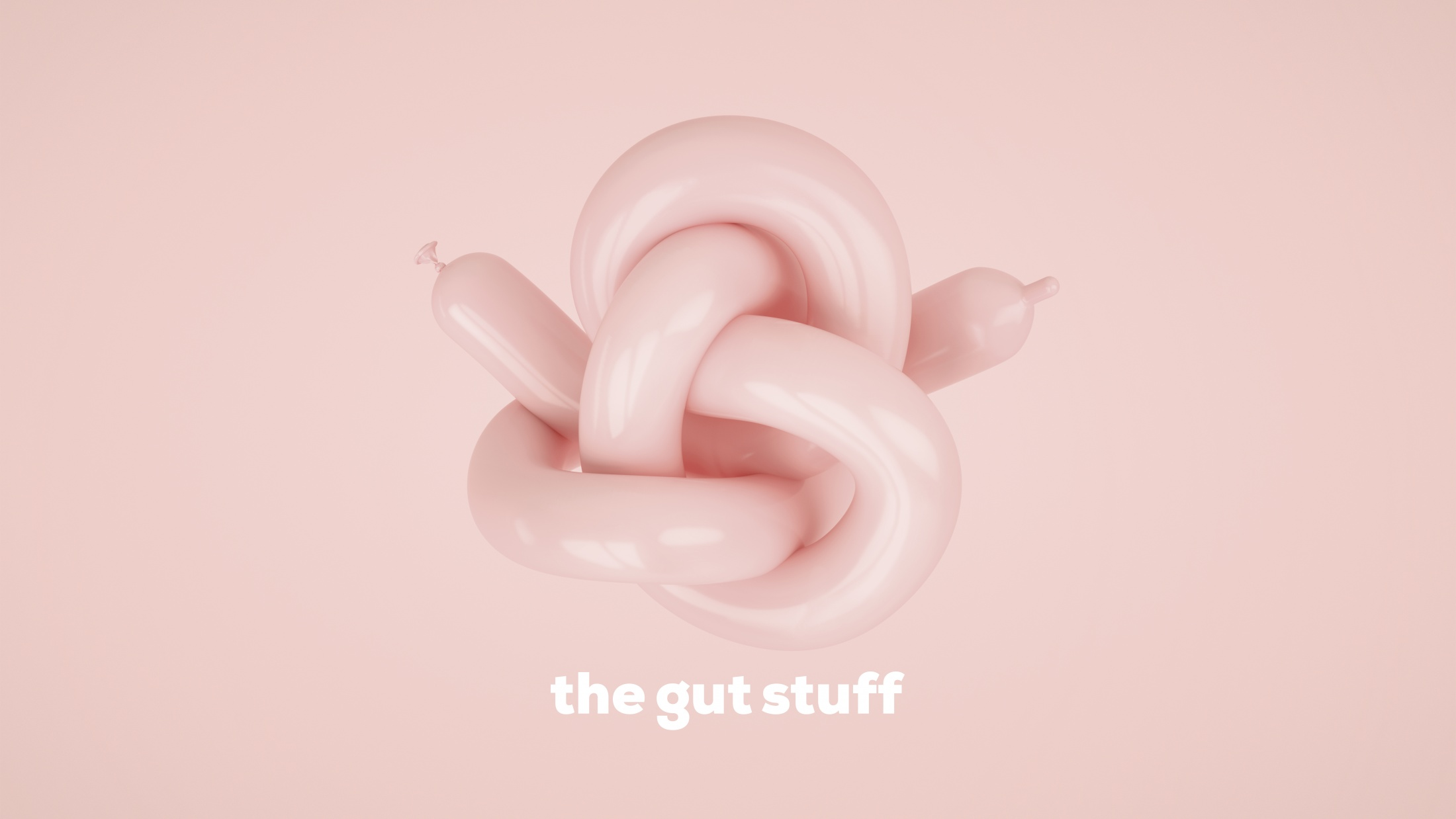Thumbnail for The Gut Stuff