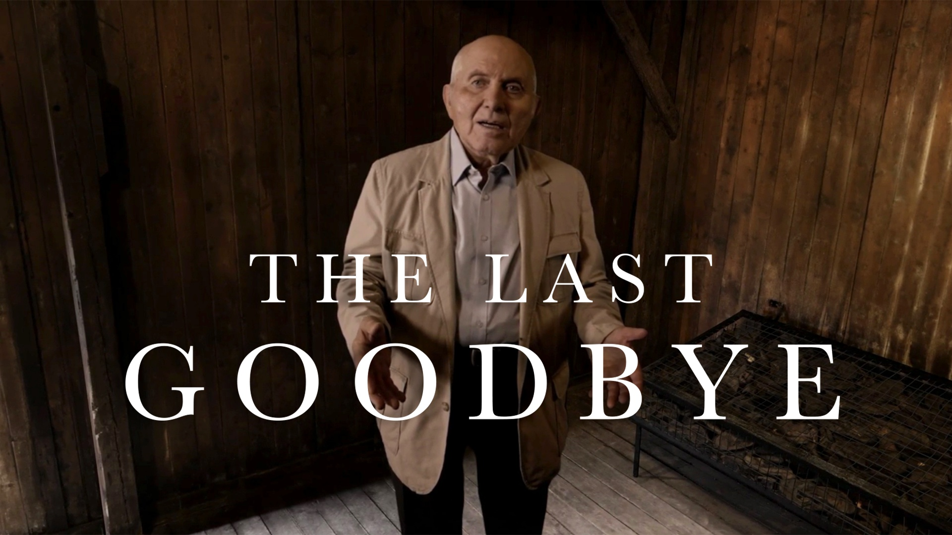 Thumbnail for The Last Goodbye