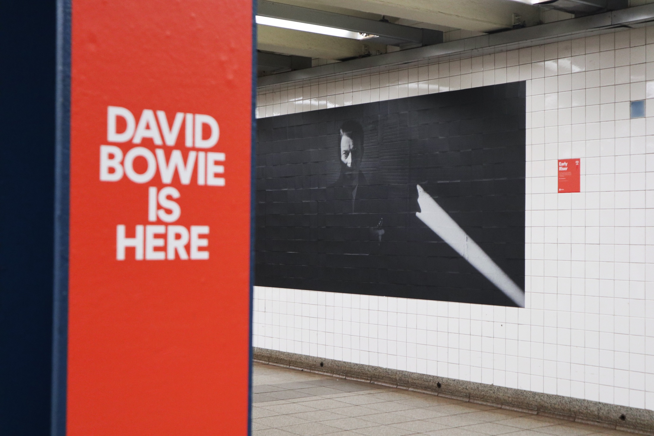 Image Media for David Bowie Is Here