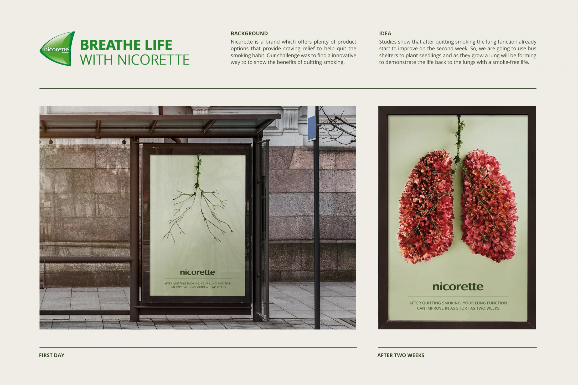 Image Media for Breathe Life