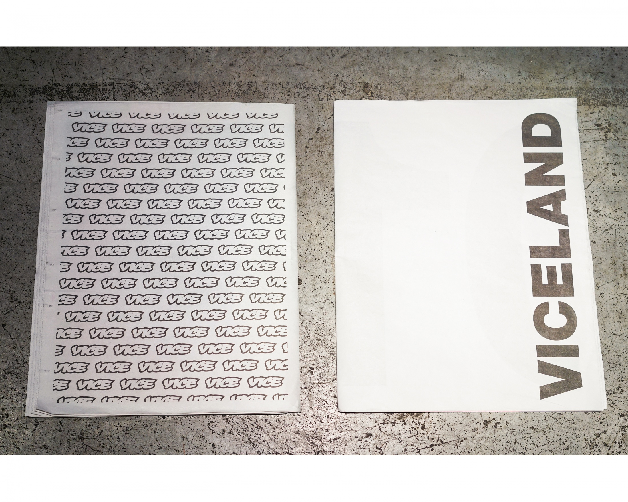 Image Media for The VICELAND Newspaper