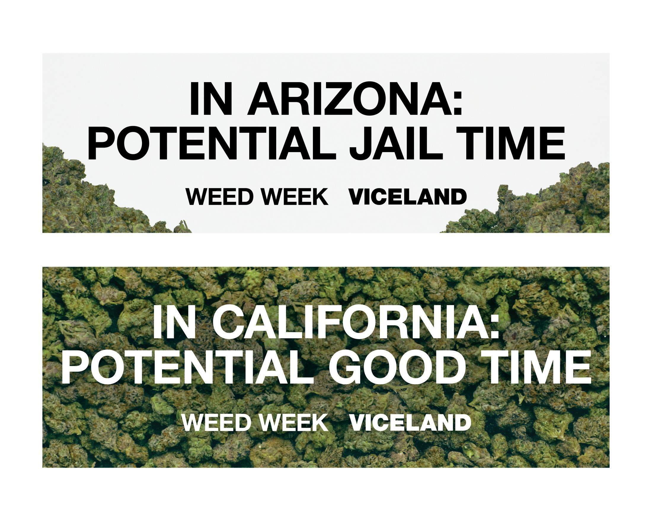 Thumbnail for VICELAND On The Border Of Marijuana Legislation