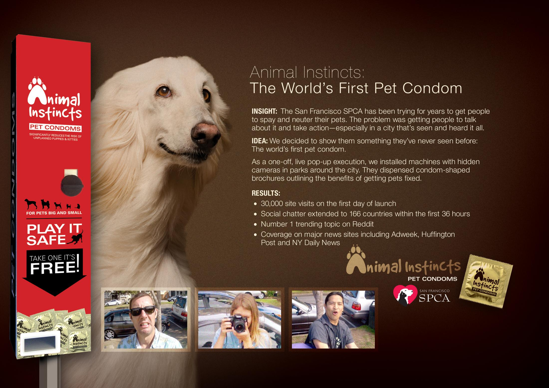 Thumbnail for San Francisco SPCA Animal Instincts Pet Condoms