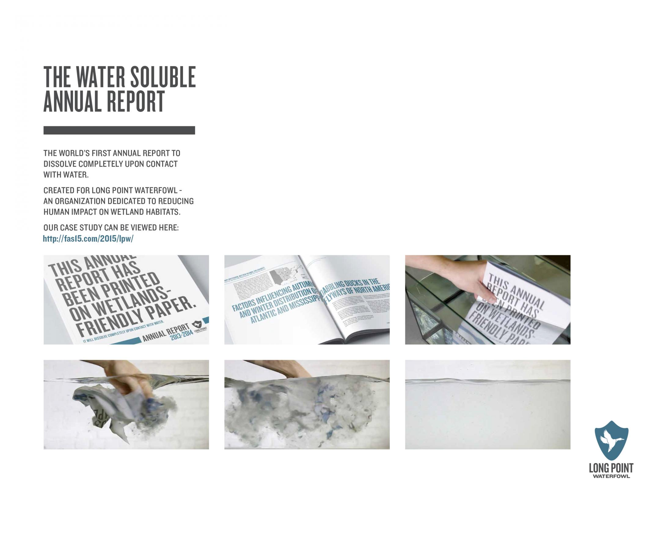 Thumbnail for Water Soluble Annual Report