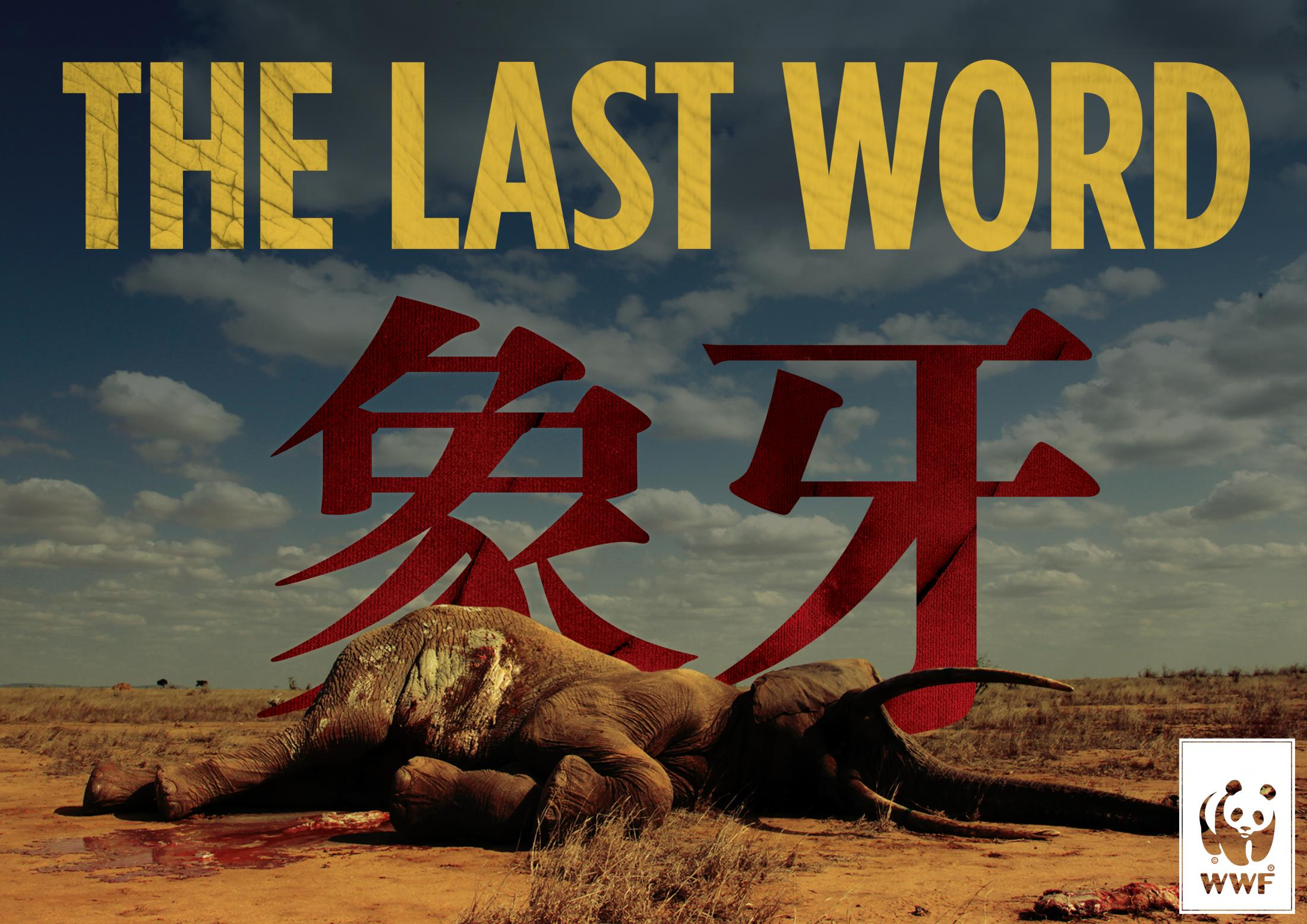 Thumbnail for The Last Word