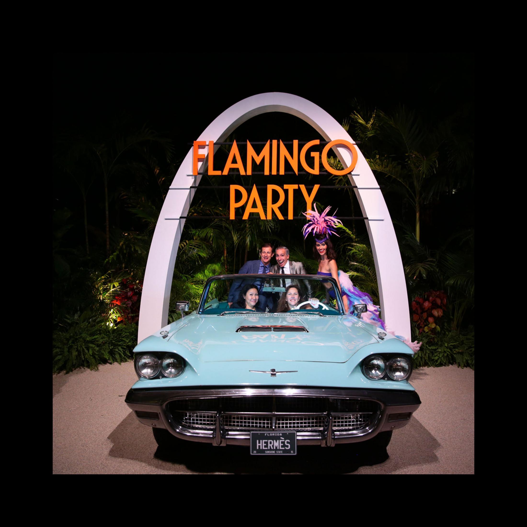Thumbnail for Flamingo Party