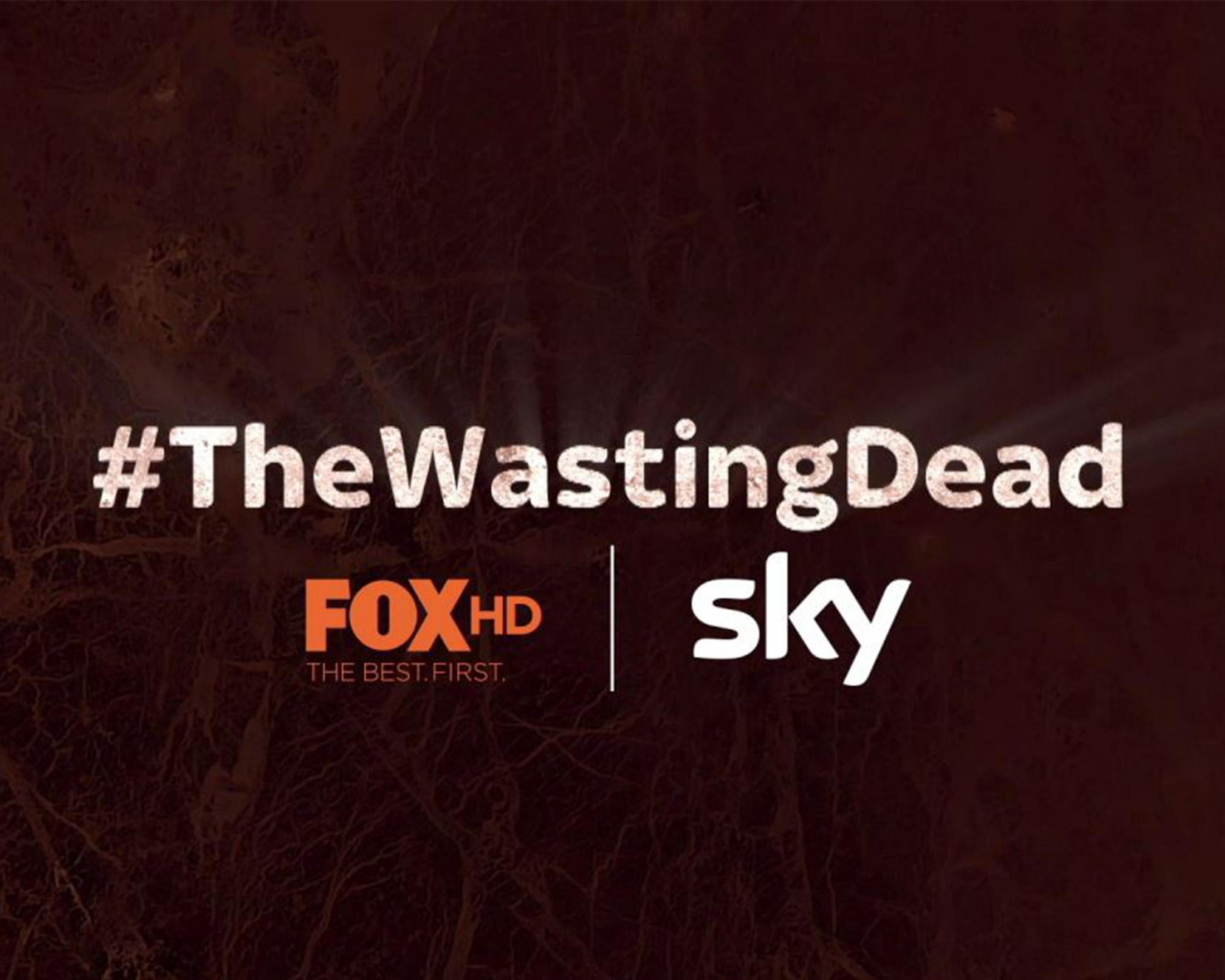 Thumbnail for The Wasting Dead