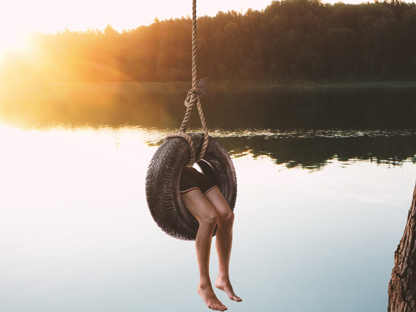 Freeform Dead of Summer Tire Swing Thumbnail