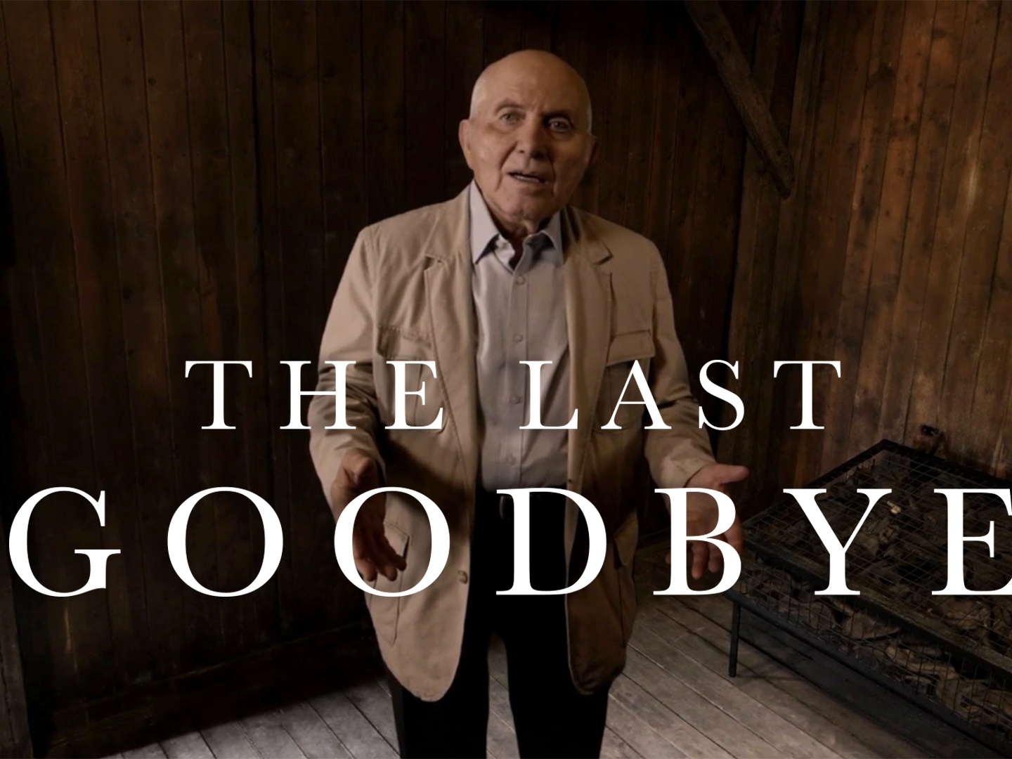 The Last Goodbye Thumbnail