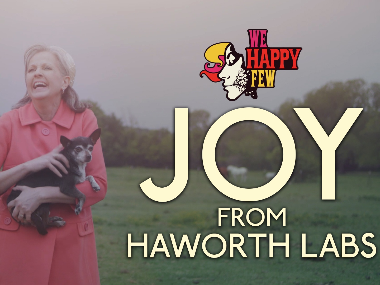 Haworth Labs: Introducing Joy Thumbnail
