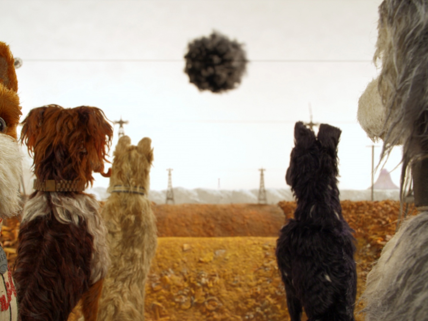 Isle of Dogs: Ode to Dogs on Set Thumbnail