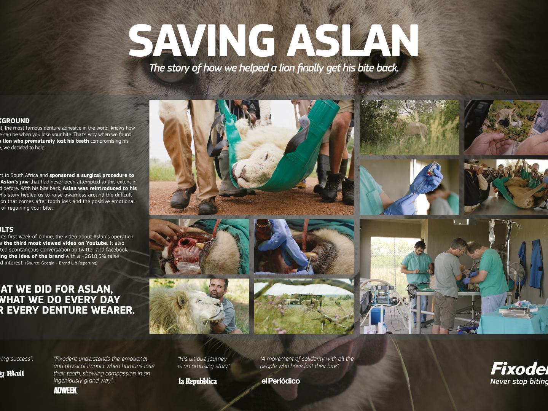 Saving Aslan Thumbnail