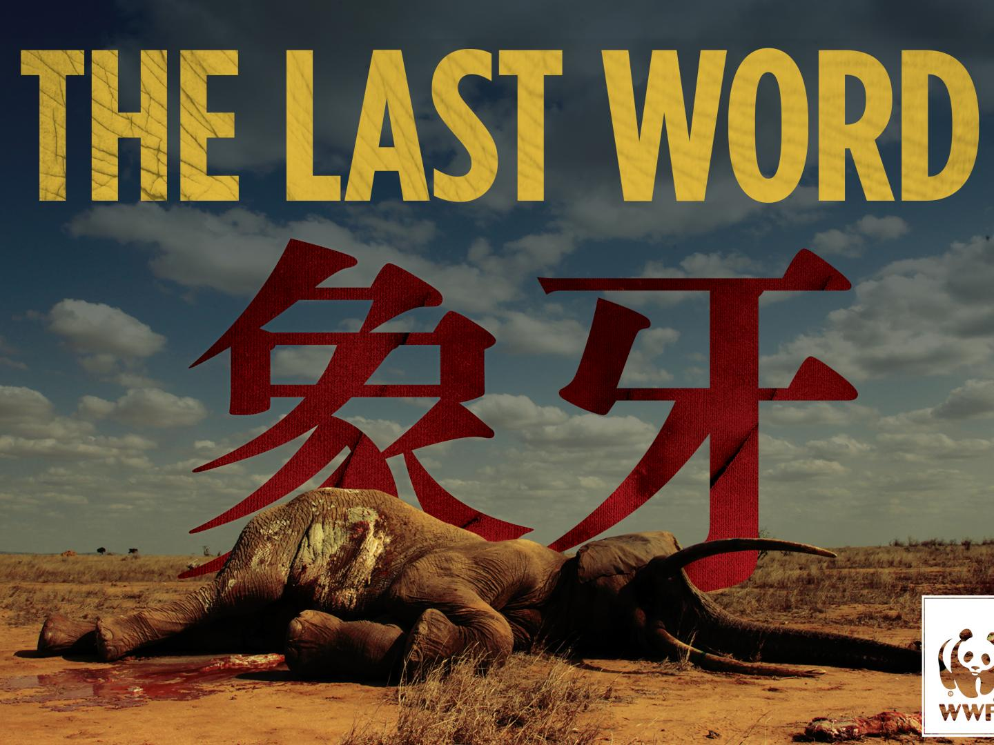 The Last Word Thumbnail