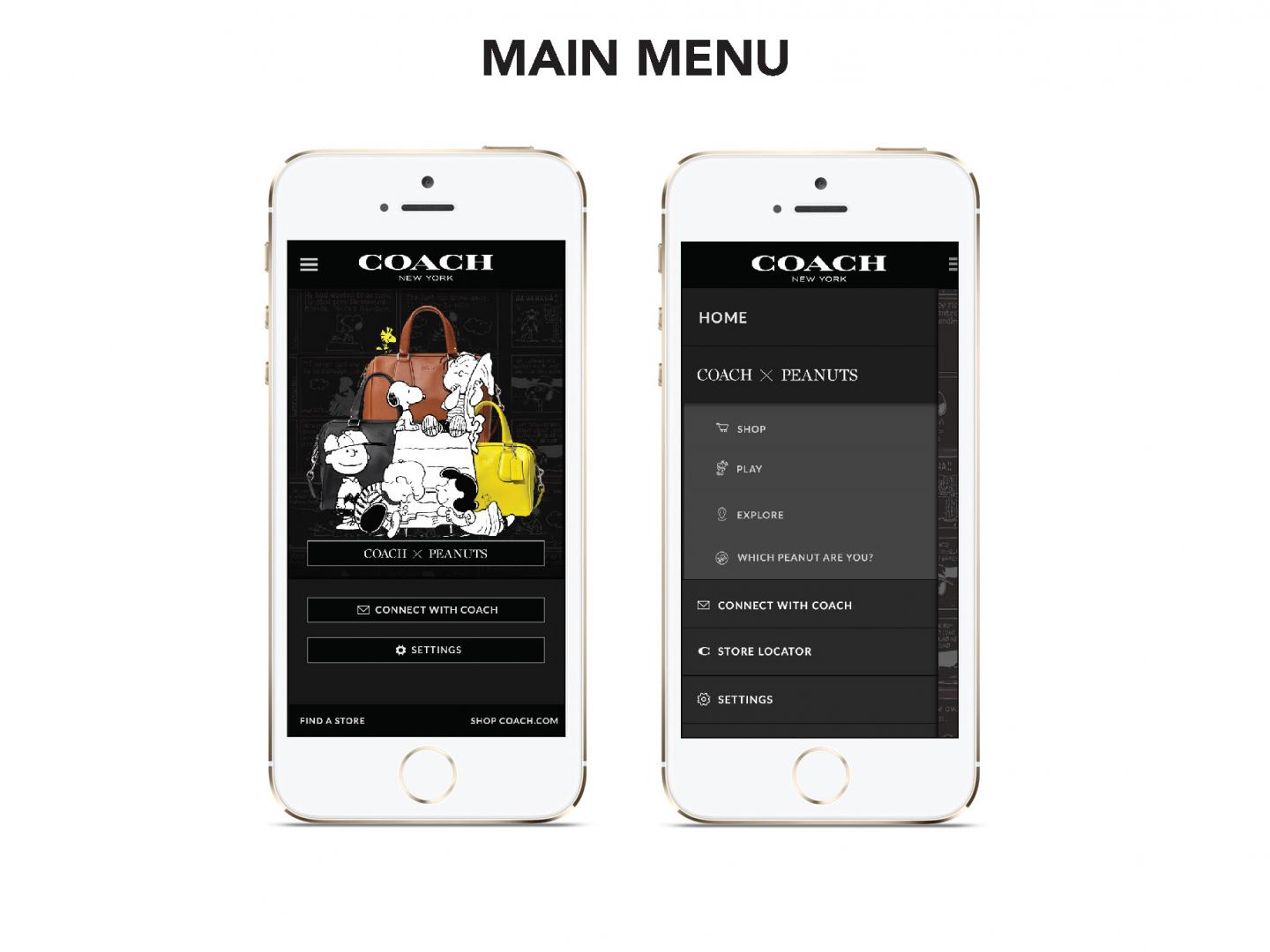 The Coach App Thumbnail