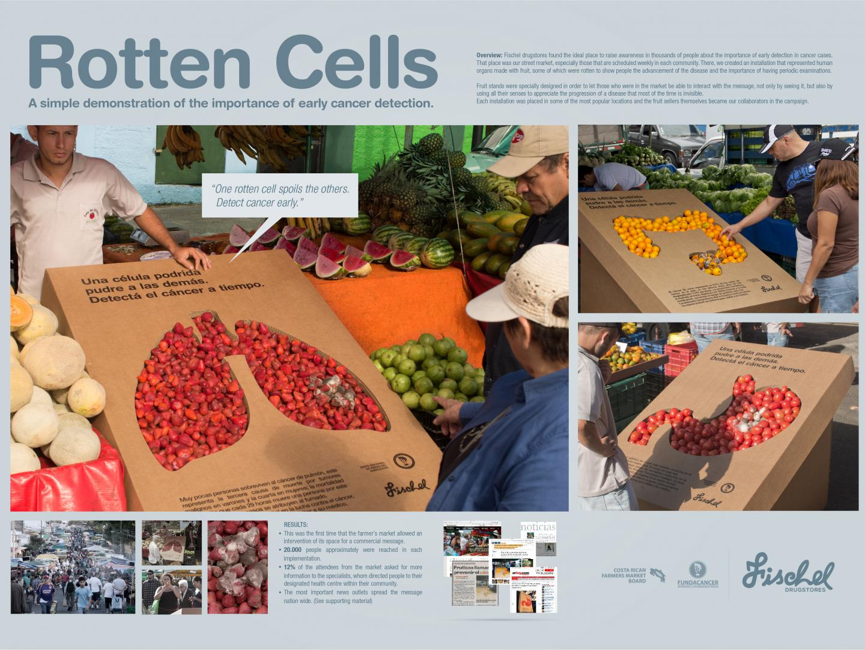 Rotten Cells Thumbnail