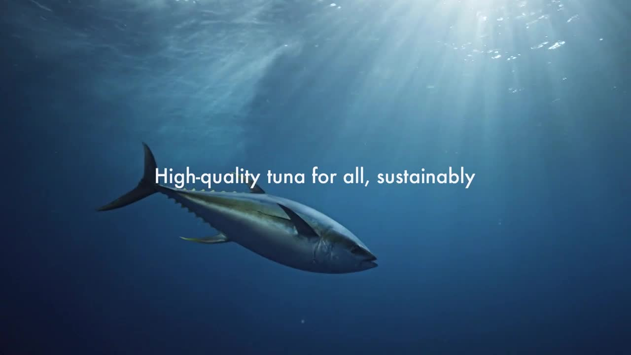 "Image result for •	""Tuna Scope"" for Sojitz Corporation"