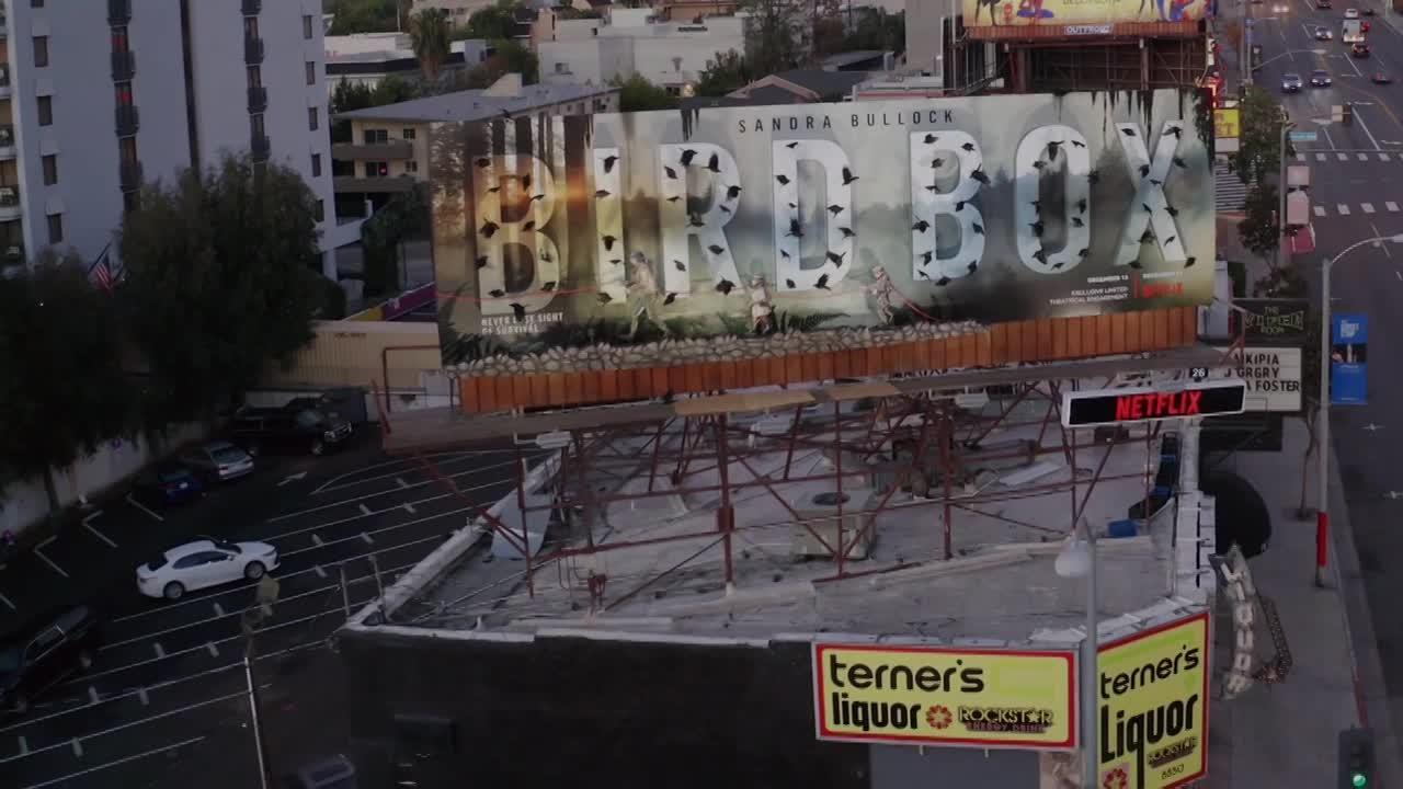 Thumbnail for Netflix Bird Box 3D Billboard