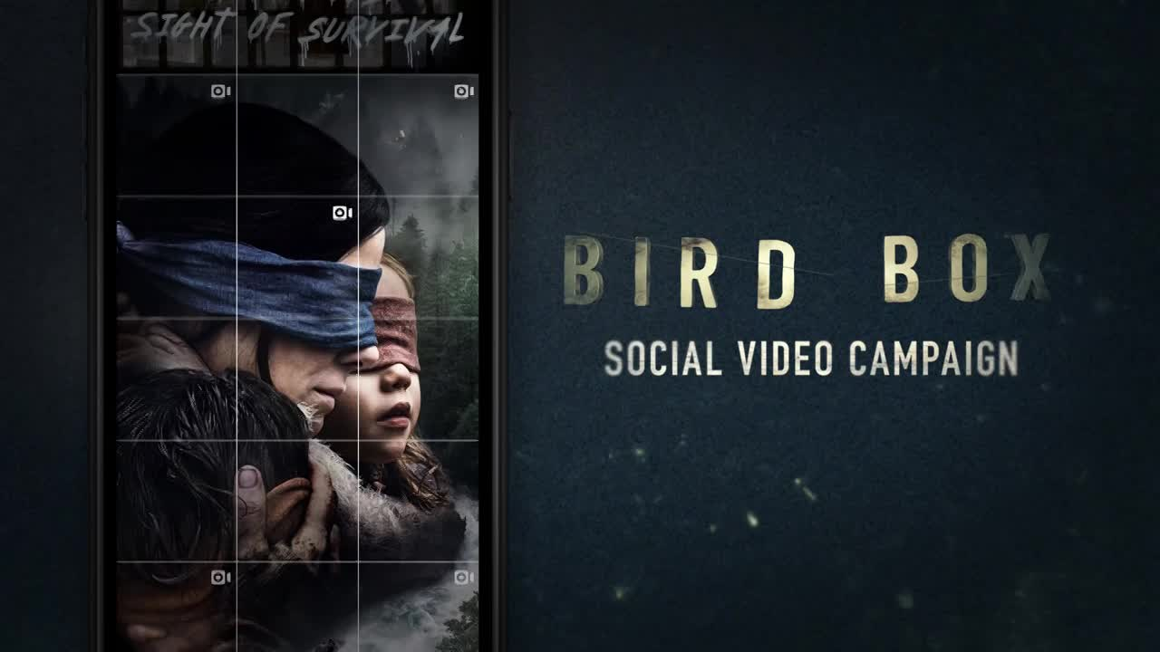 Thumbnail for Bird Box Social Video Campaign