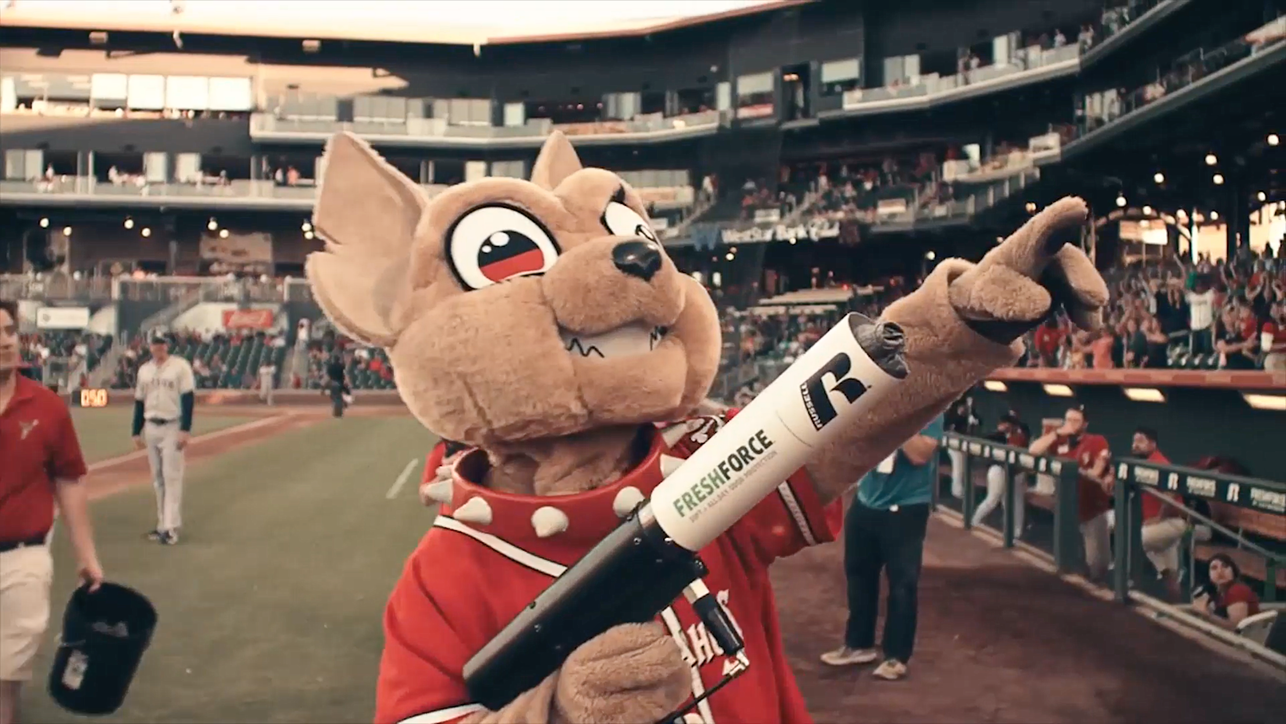 Thumbnail for MINOR LEAGUE MASCOTS, MAJOR LEAGUE FUNK | CHICO