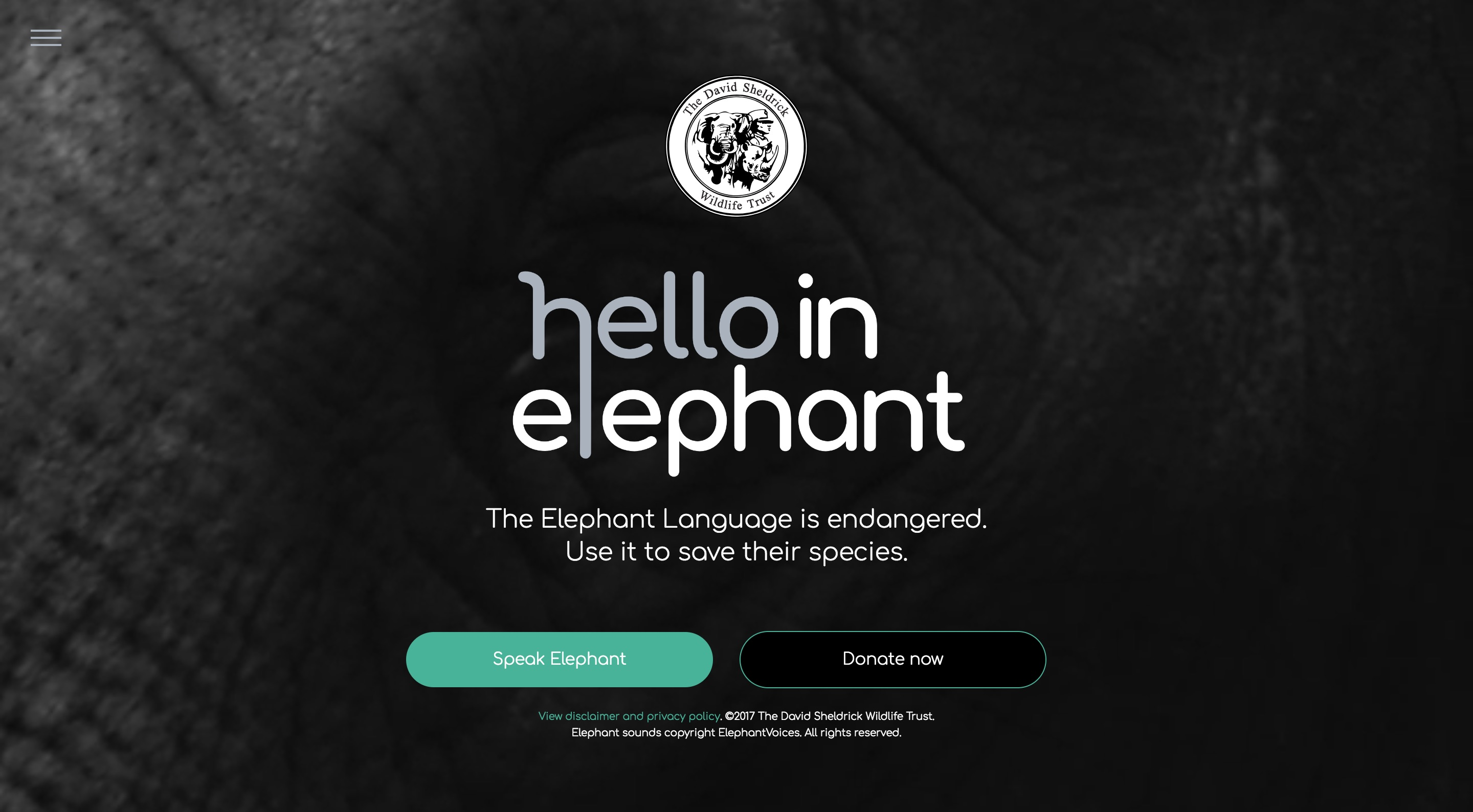 Hello in Elephant Thumbnail