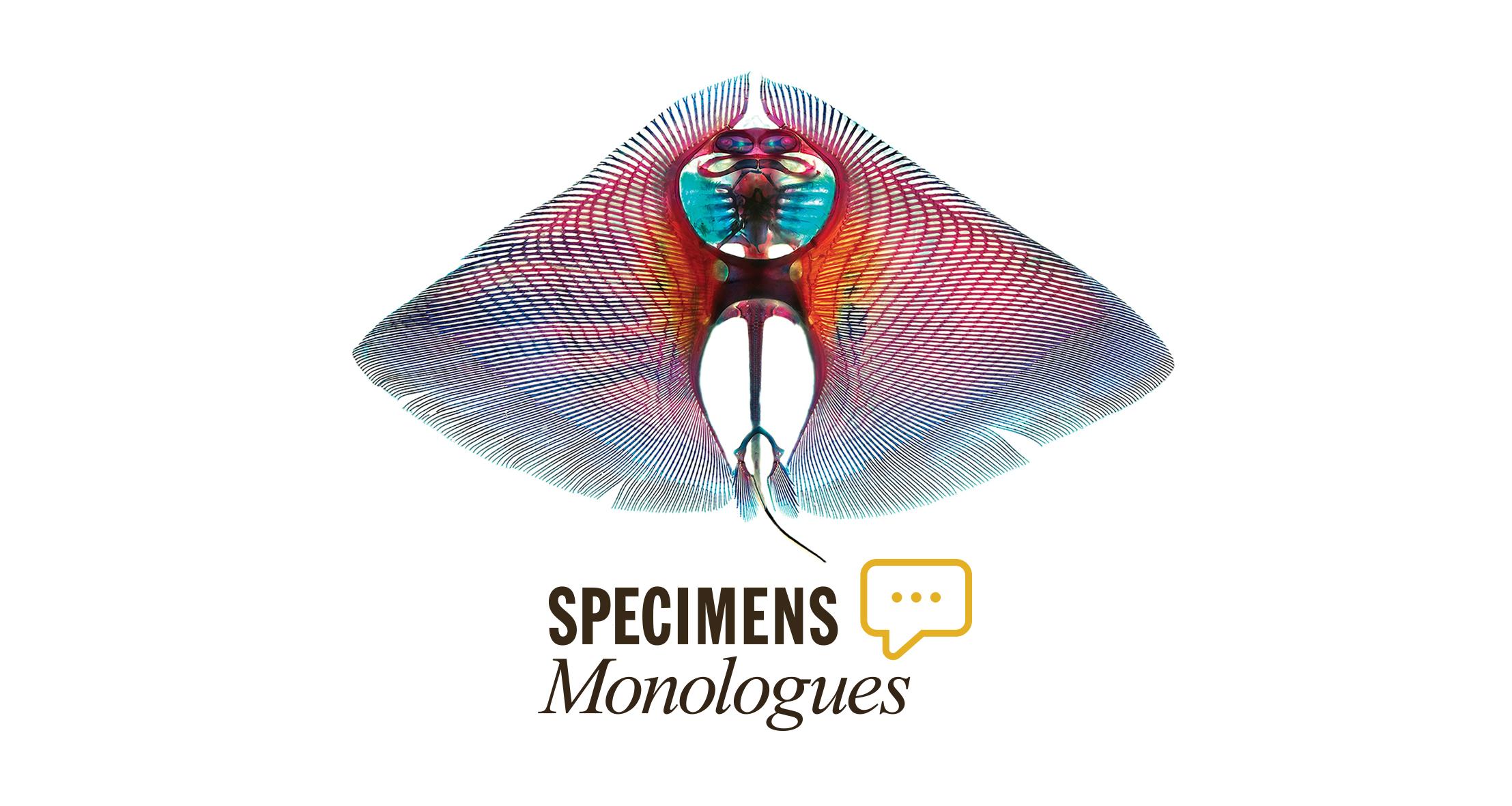 Specimen Monologues Thumbnail