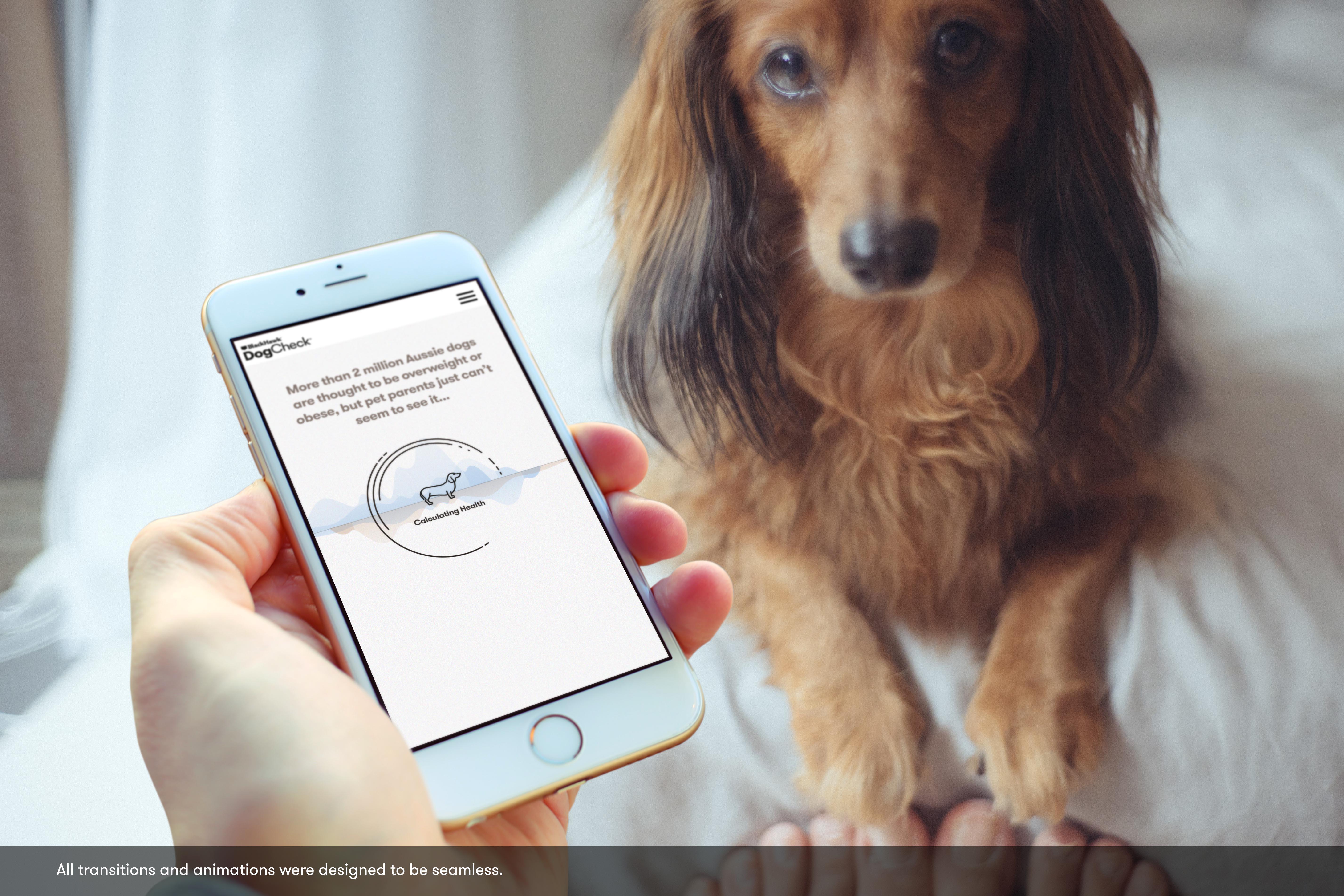 DogCheck Thumbnail