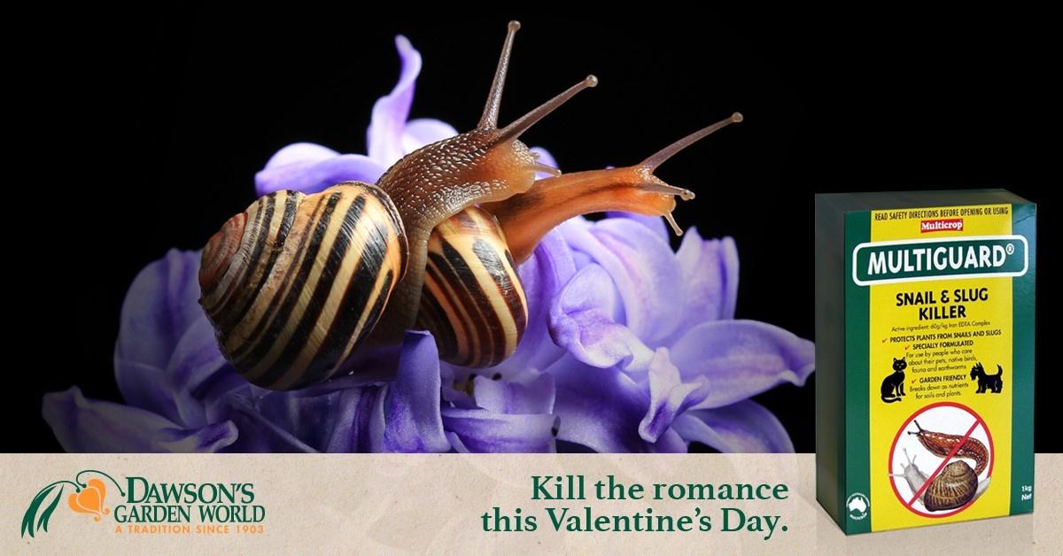 Thumbnail for Kill the Romance