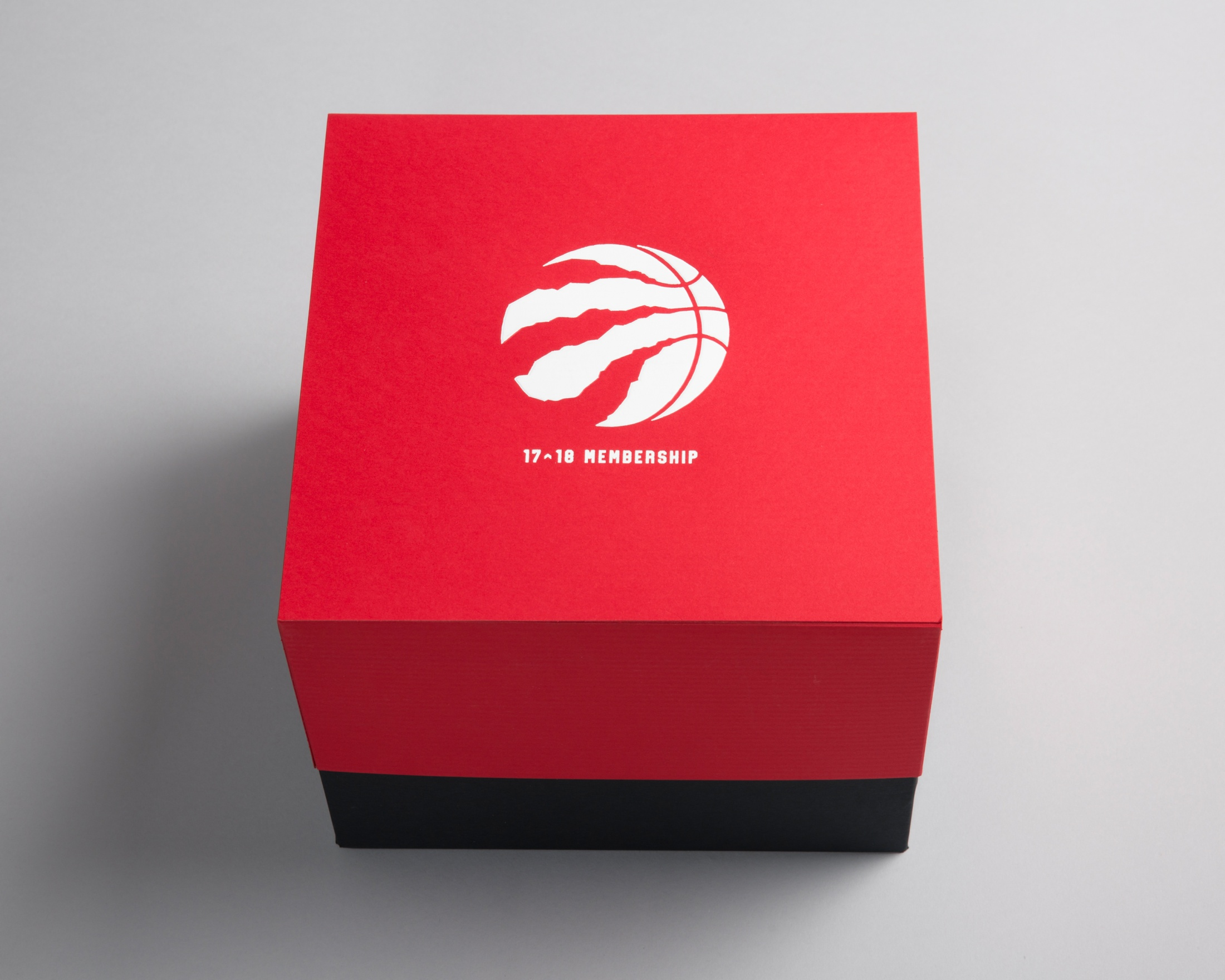 Thumbnail for Toronto Raptors Season Ticket Package 2017-18