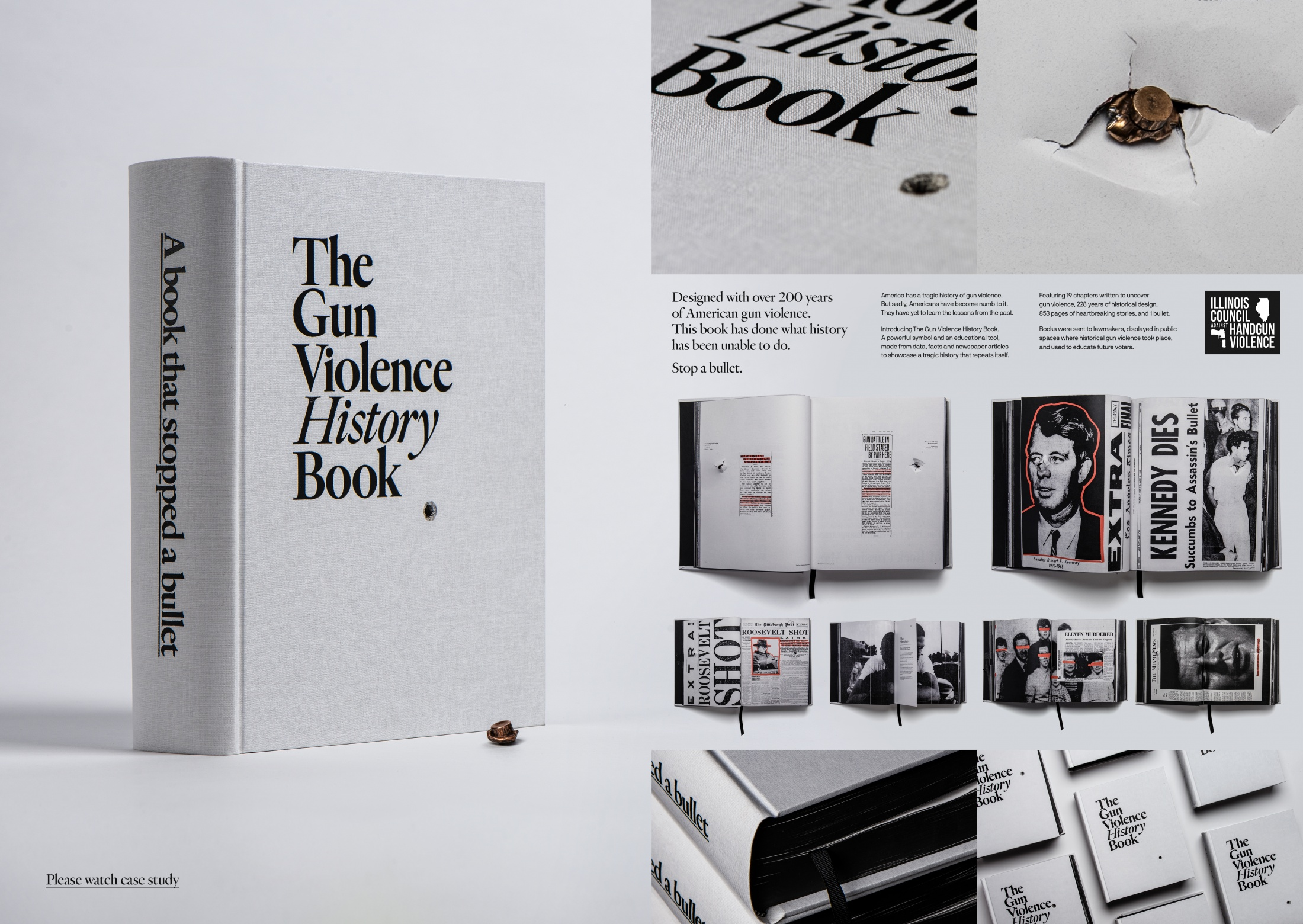 Image Media for The Gun Violence History Book
