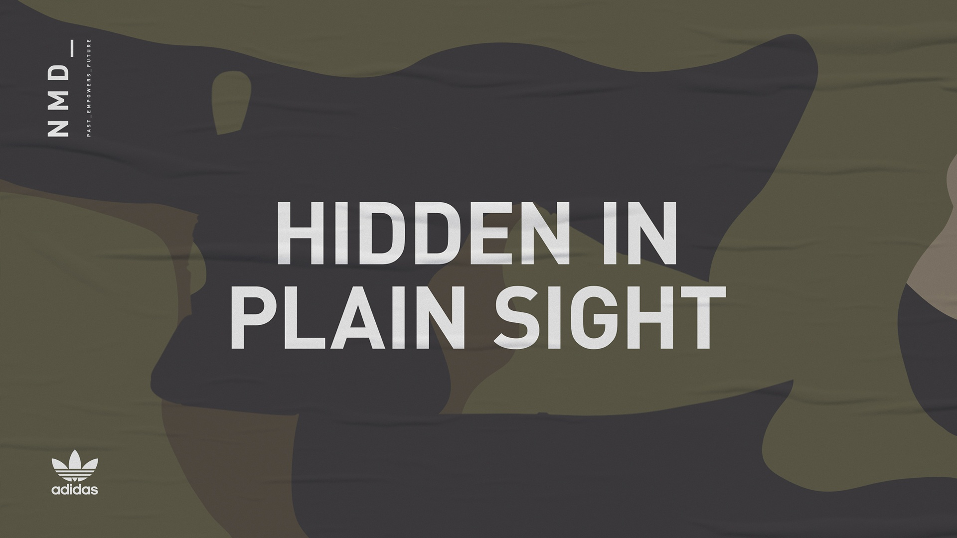 Thumbnail for Hidden in Plain Sight