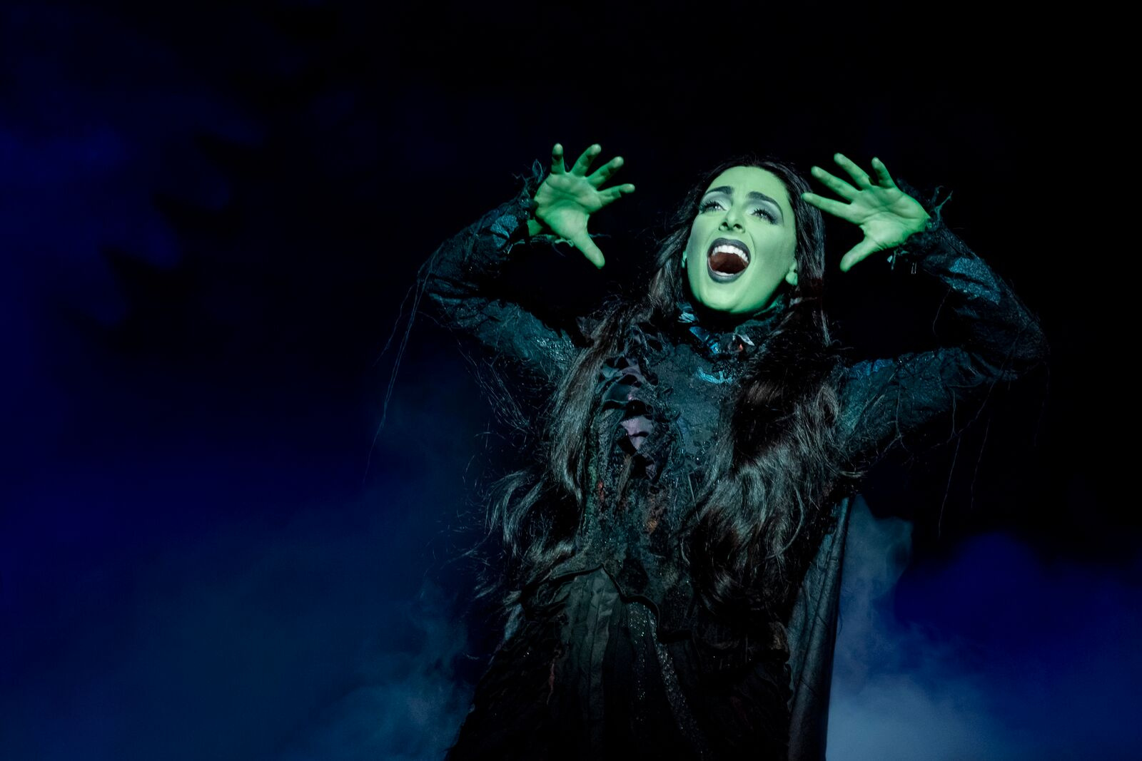 Thumbnail for Flying Lessons: The Journey of Elphaba in WICKED