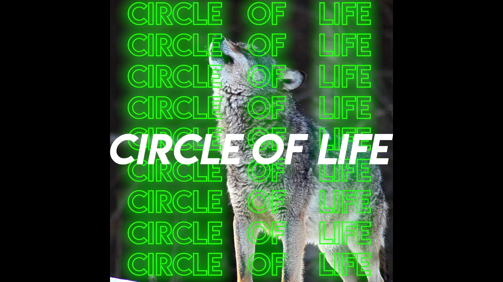 Thumbnail for Most Expensivest - Circle of Life