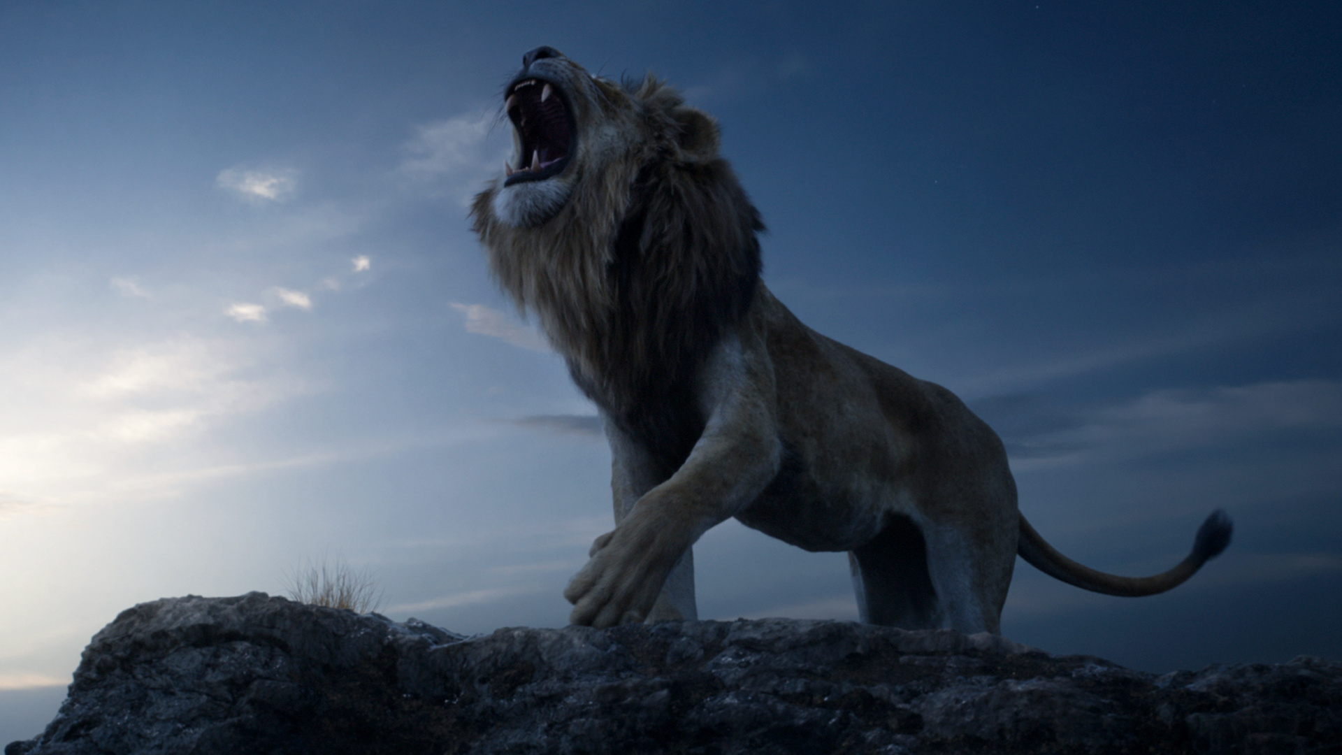Thumbnail for The Lion King