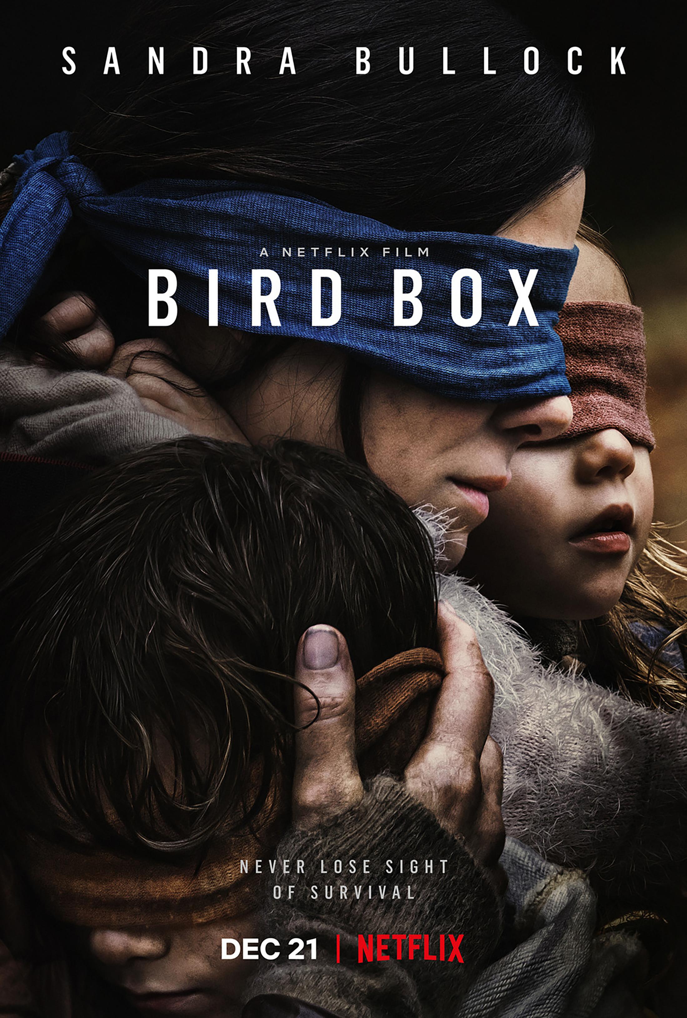 Thumbnail for Bird Box