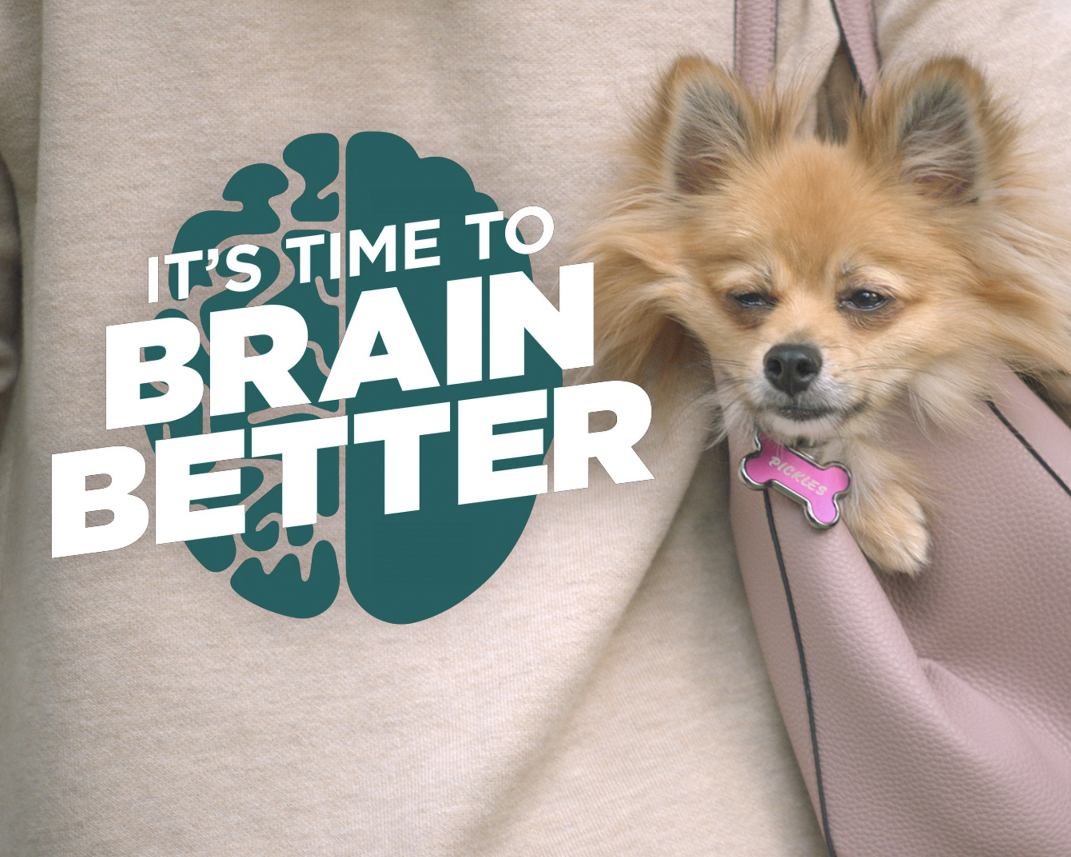 Thumbnail for Neuriva - It's Time To Brain Better (Pickles)