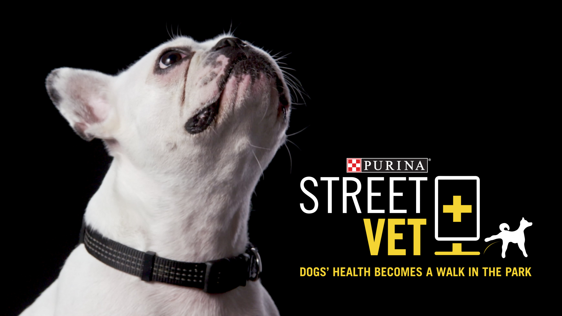 Thumbnail for Street-Vet