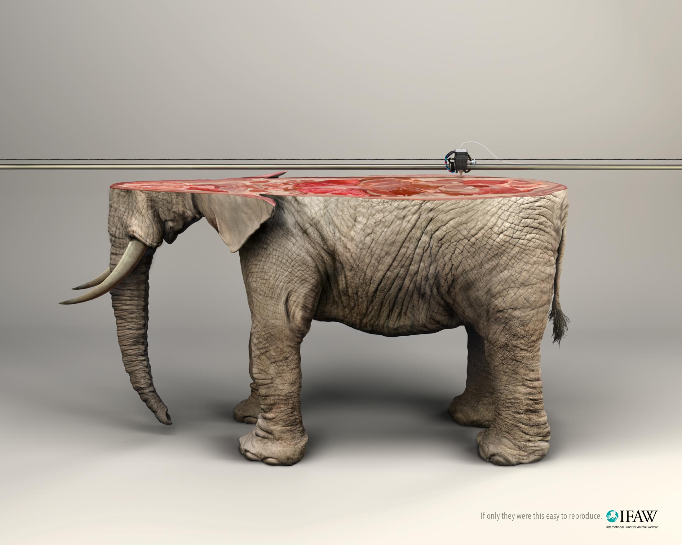 Thumbnail for 3D Printer/ELEPHANT