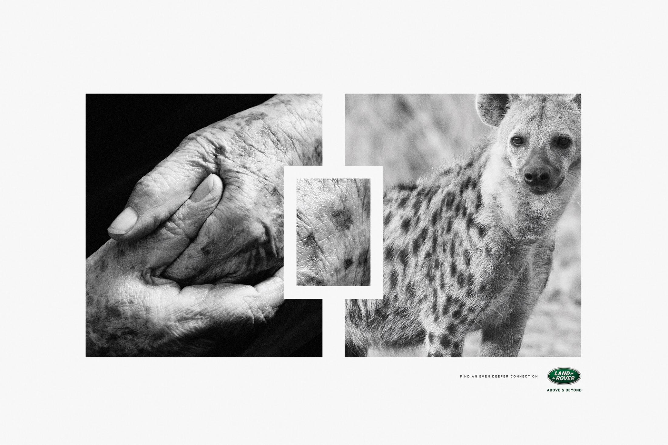 Thumbnail for Hyena