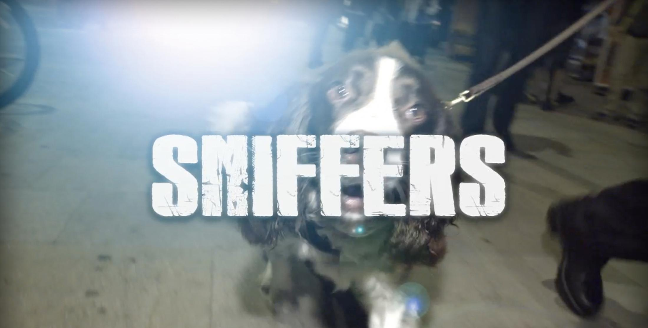 Thumbnail for Sniffers
