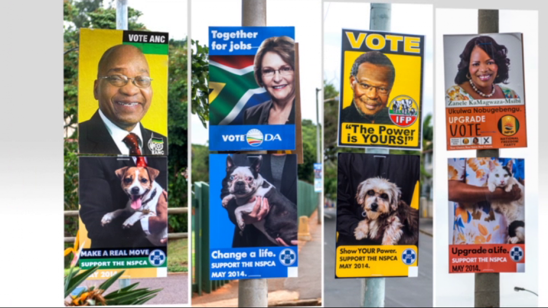 Thumbnail for Vote NSPCA