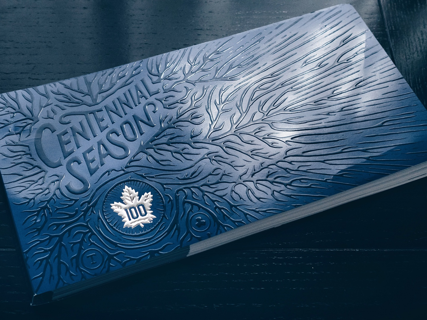 Toronto Maple Leafs 2016-17 Centennial Season Ticket Package Thumbnail