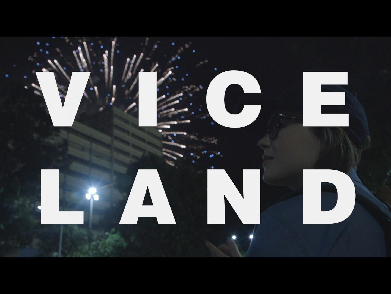 VICELAND Brand Identity Thumbnail