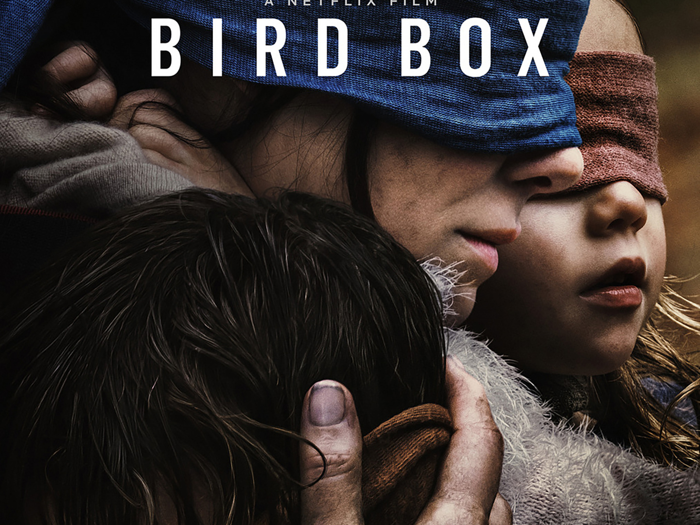 Bird Box Thumbnail