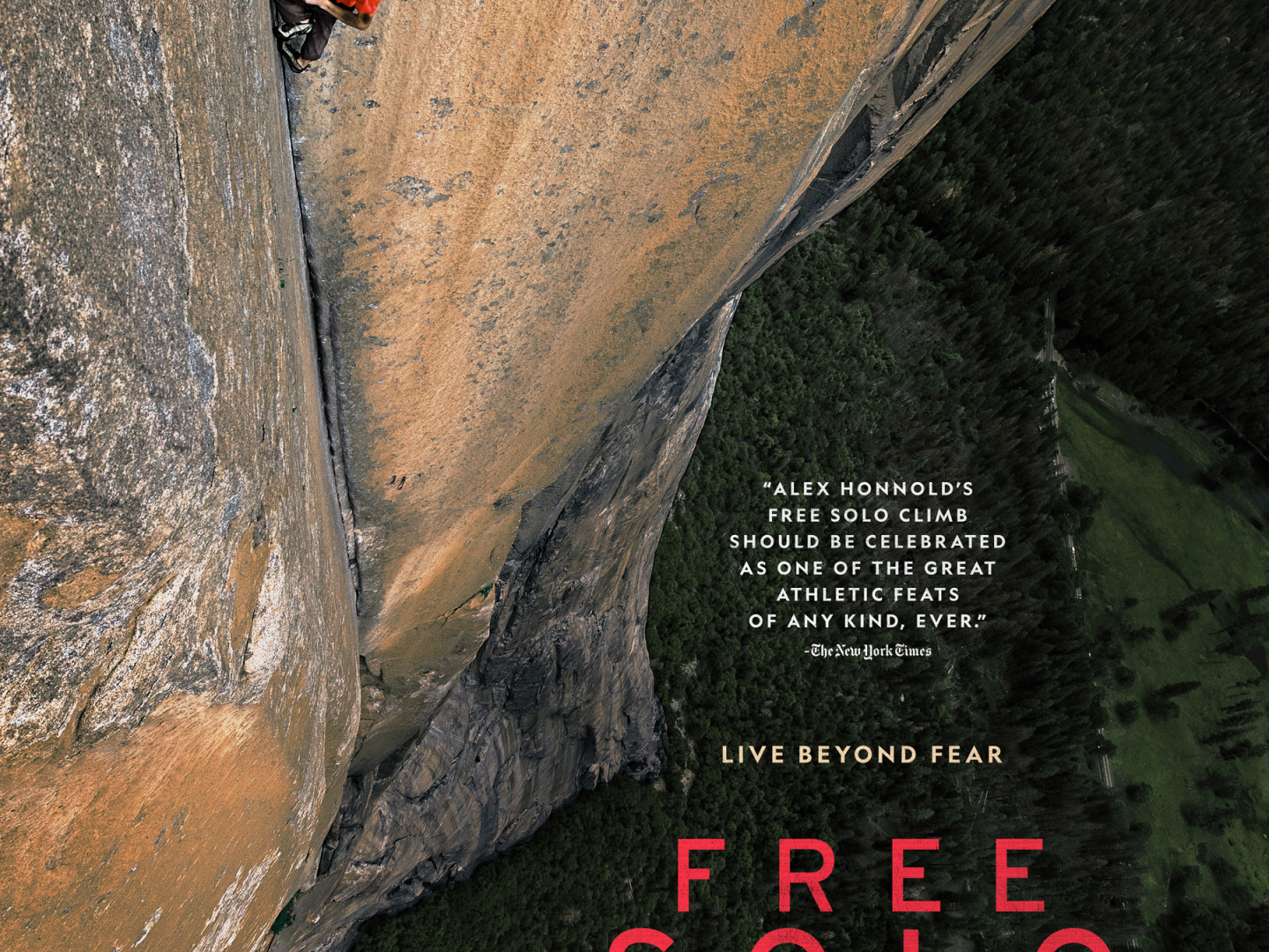 Free Solo: Climbing El Capitan 360 Video Thumbnail