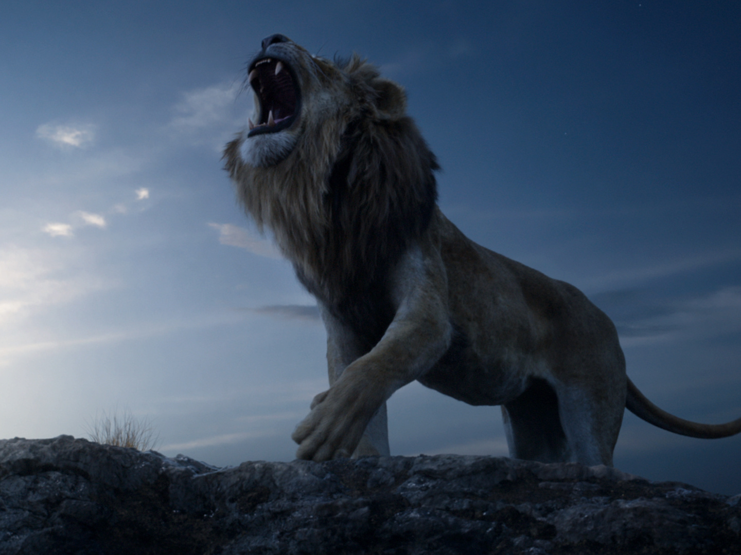 The Lion King,