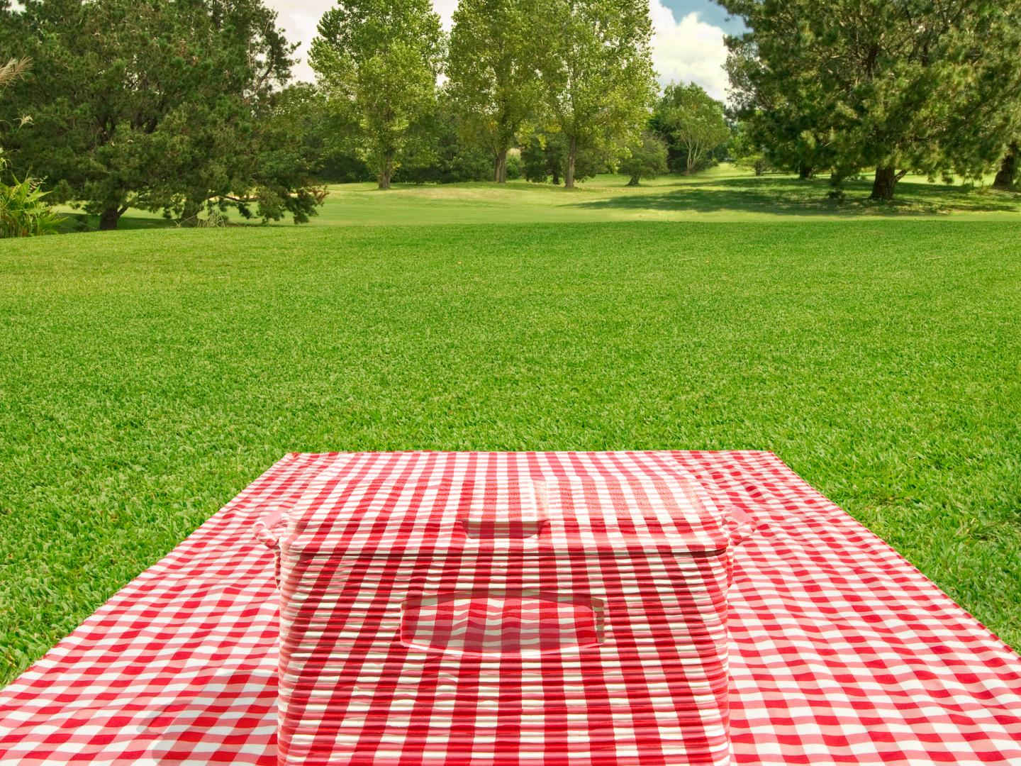 Picnic Camouflage Thumbnail