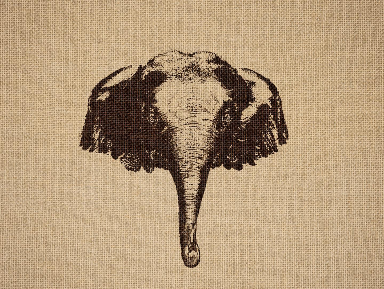 Elephant & Swan Thumbnail